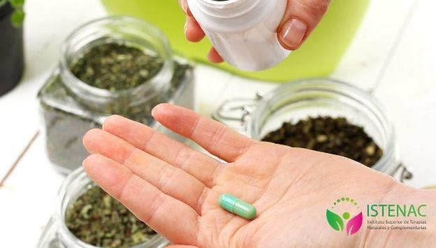 Plantas medicinales y sus usos